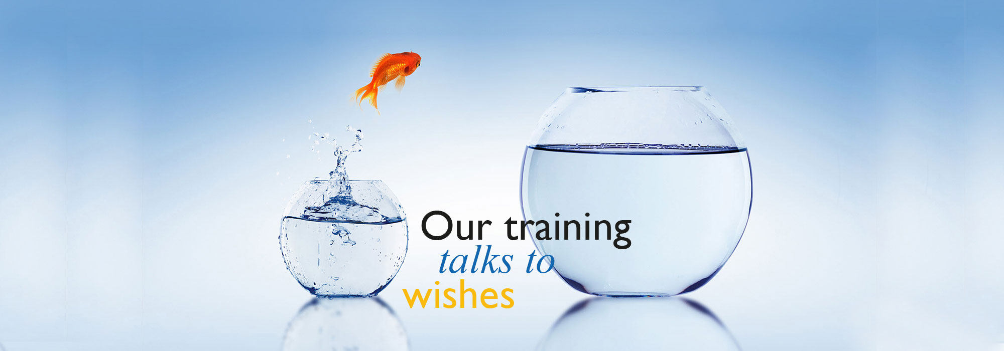 our training talk to wishes